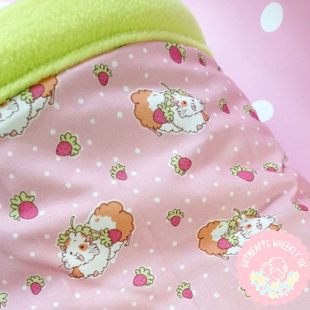 *NEW BACK IN STORE* Strawberry Guinea Pig Bed Snuggle Sack - Guineapig Wheekly UK