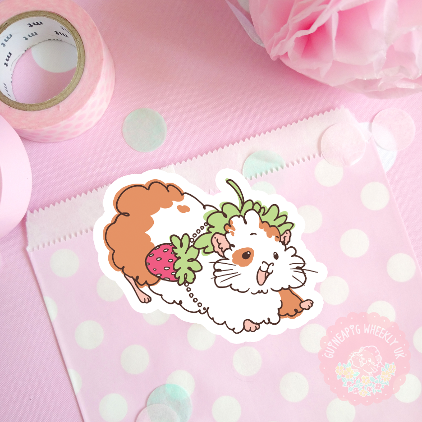Magical Guineapig Single Sticker Sets