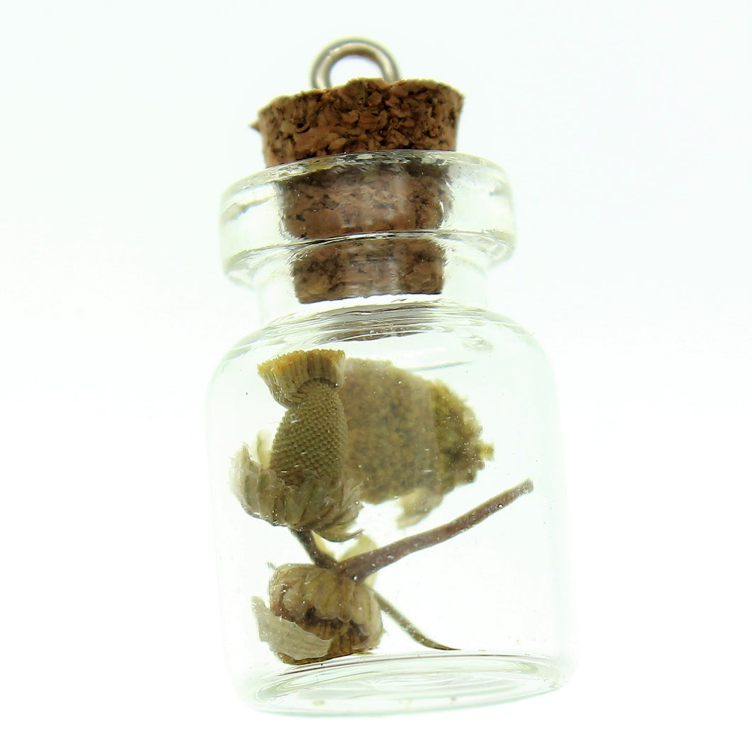 Bottle Charms with Bail Herbs in 22x15mm Glass Bottle