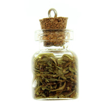 Load image into Gallery viewer, Bottle Charms with Hang Hole Herbs and Oil in 22x15mm Glass Bottle