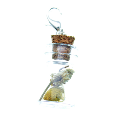 Clip-On Bottle Charms with Herbs Chamomile Flowers
