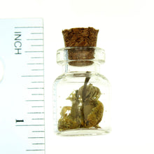 Load image into Gallery viewer, Bottle Charms Herbs in 22x15mm Glass Bottle