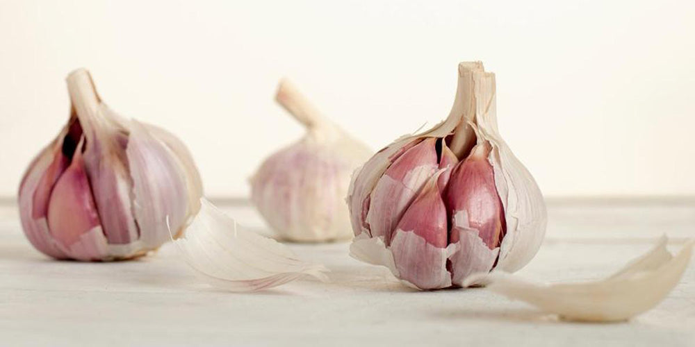 Garlic for Good Health
