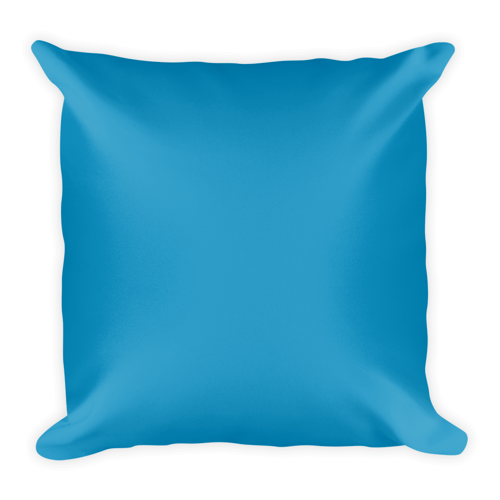 I Will Not Sit Down and I Will Not Shut Up Pillow
