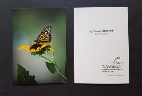 Monarch Butterfly on a Sunflower photo, greeting card, Crystal Lawrence, set of 4 with envelopes, blank inside