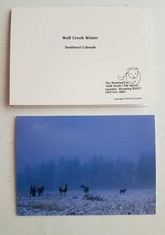 Wolf Creek Winter Color Photo greeting cards of ranch horses under a winter sky, set of 4 with enevelopes, blank inside