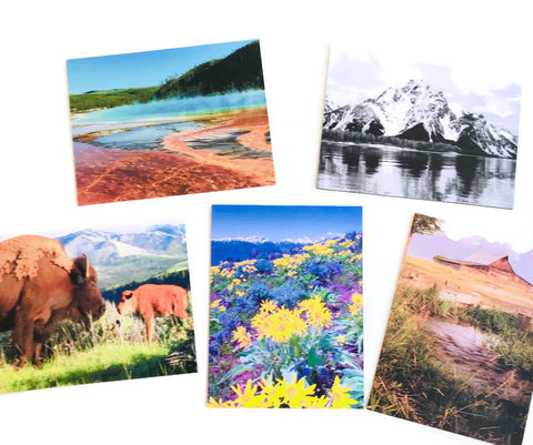 Wyoming Card 5 Pack
