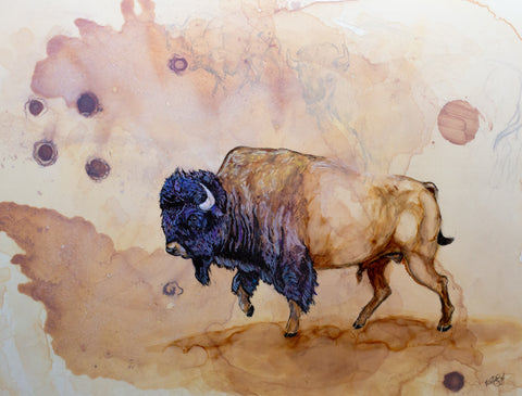 Bison bison Original Mixed Media