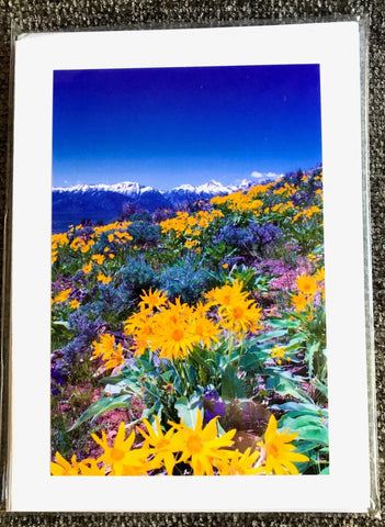 "Wyoming Scenic 5 x 7"" Greeting Card Pack"