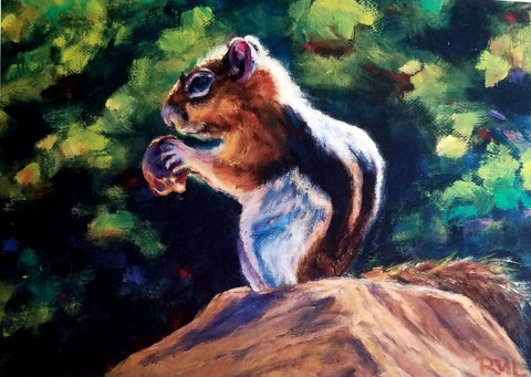 ground squirrel enjoying a nut while standing on a rock. green foliage background. 5 by 7 blank card with envelope
