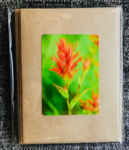 Wyoming Wild Flowers Greeting Card Pack
