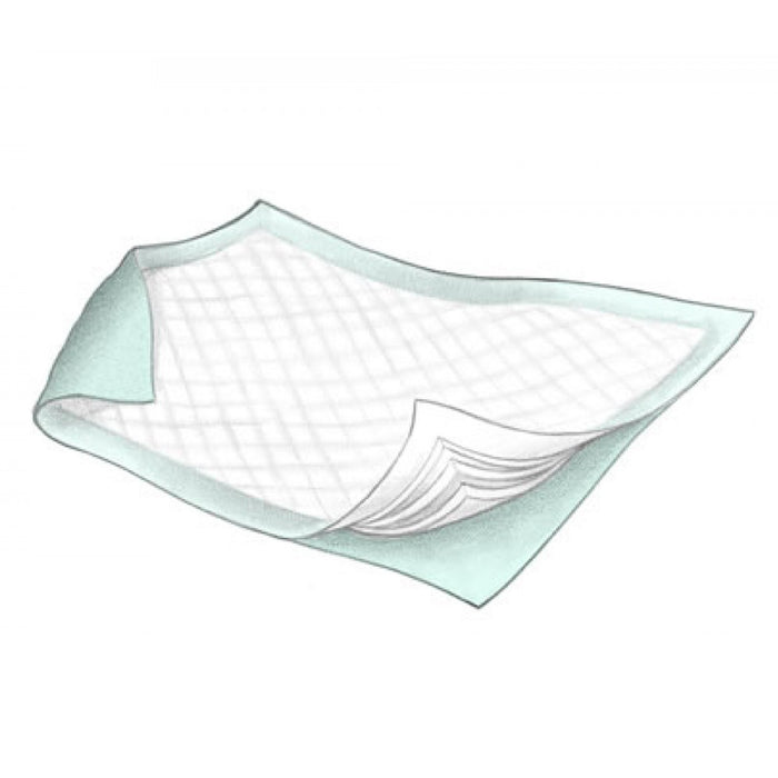 DURASORB Disposable Underpads