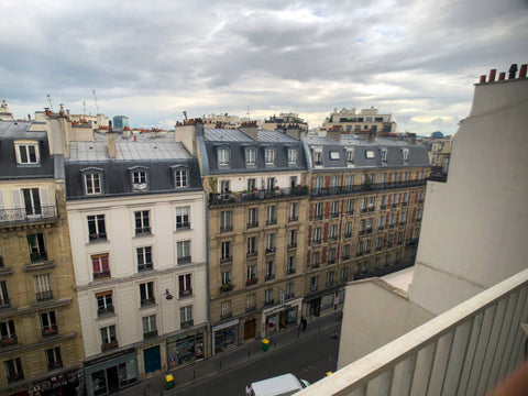View from Paris Apartment