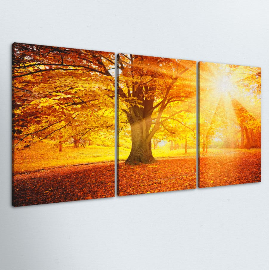 Autumn Morning 3 Piece Canvas
