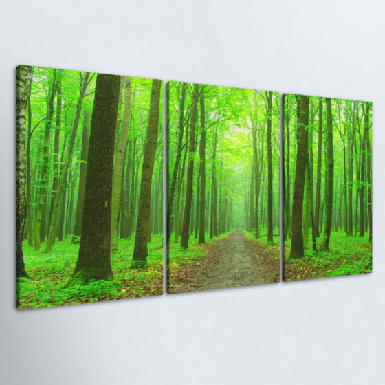 The Path 3 Piece Canvas
