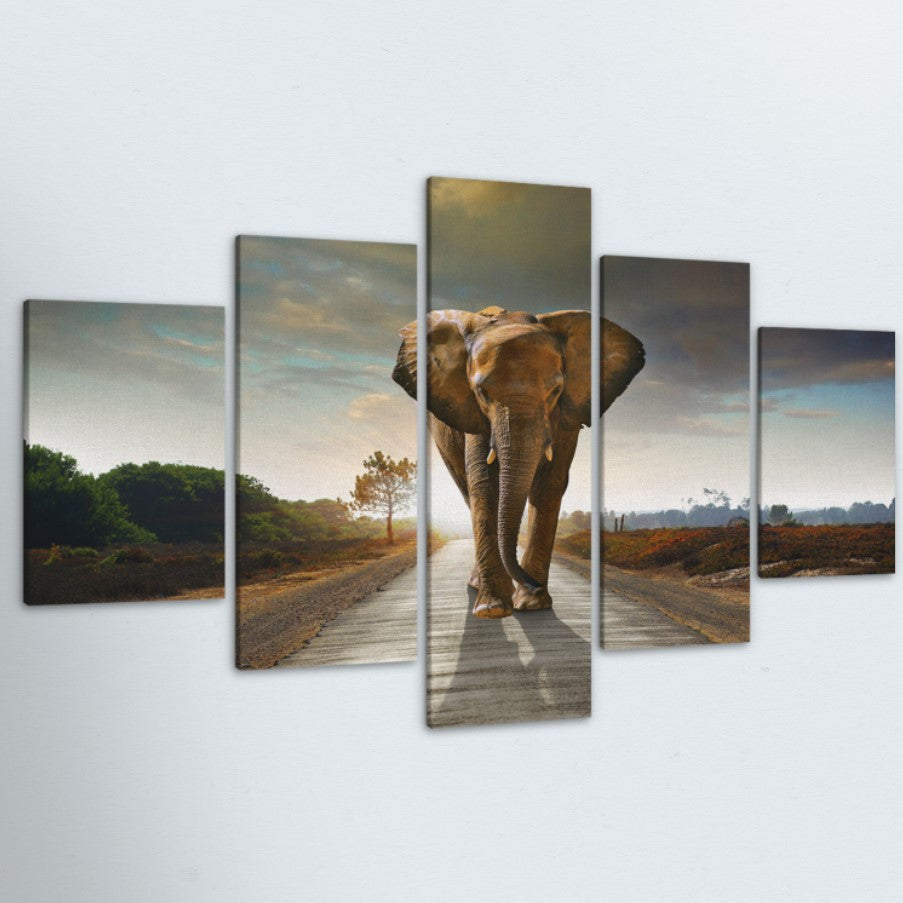 Elephant 5 Piece Canvas