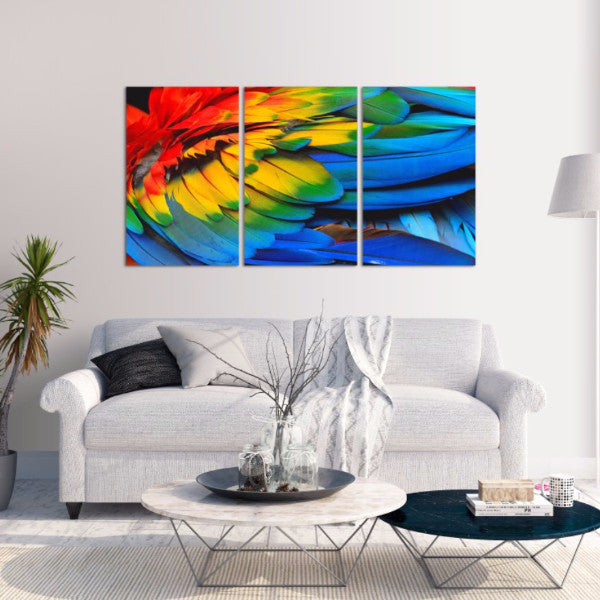 Feathers 3 Piece Canvas