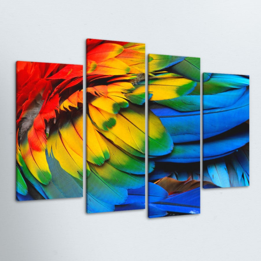 Feathers 4 Piece Canvas