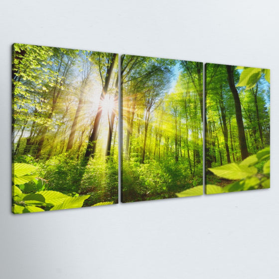 Shine Through 3 Piece Canvas