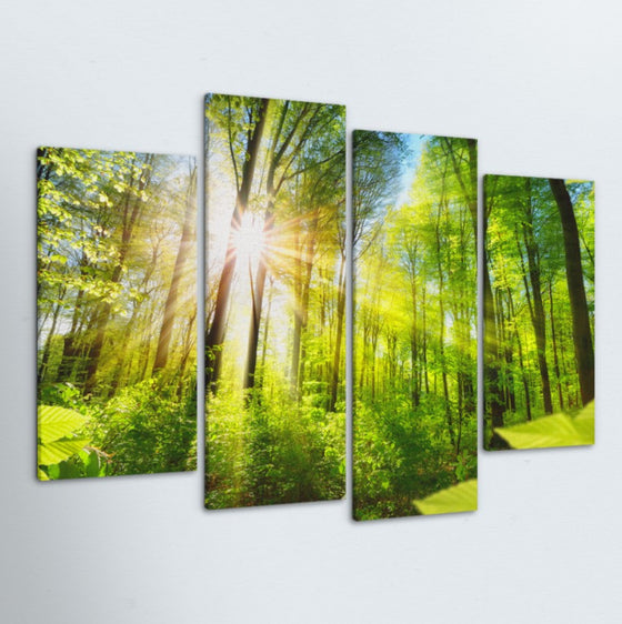 Shine Through 4 Piece Canvas