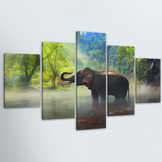 Elegant Elephant 5 Piece Canvas