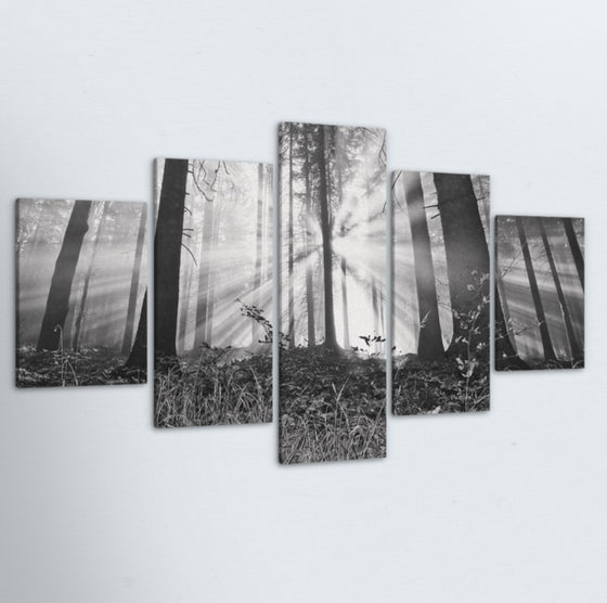 Forest Sunrise 5 Piece Canvas