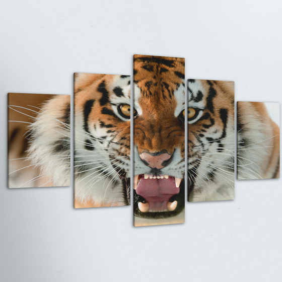 Tiger 5 Piece Canvas
