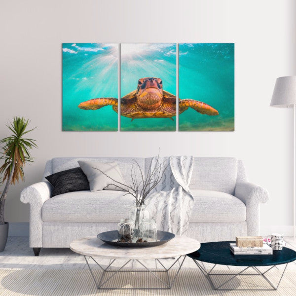 Sea Turtle 3 Piece Canvas