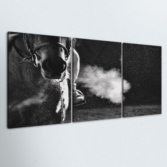 Breathe 3 Piece Canvas