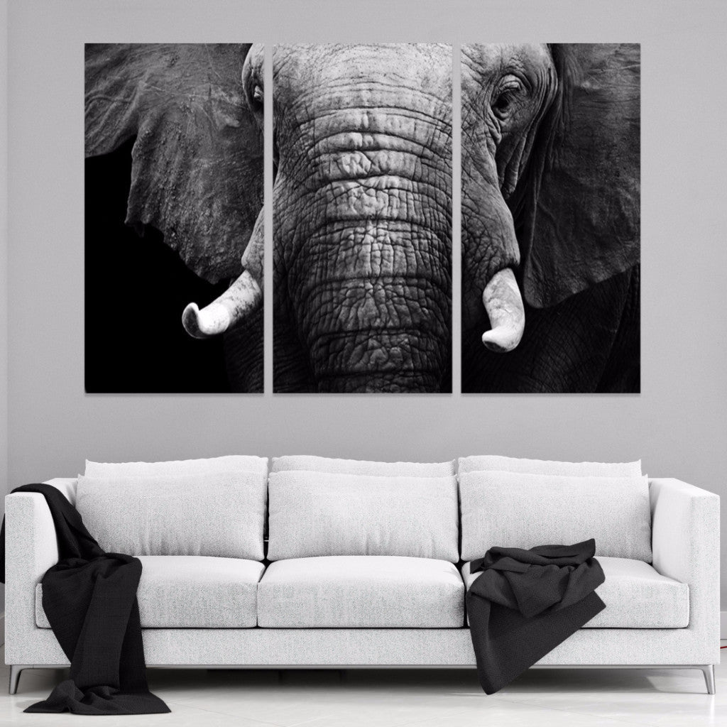 Elephant Portrait 3 Piece Canvas