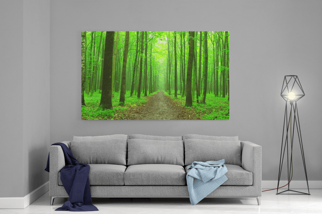 The Path Single Canvas