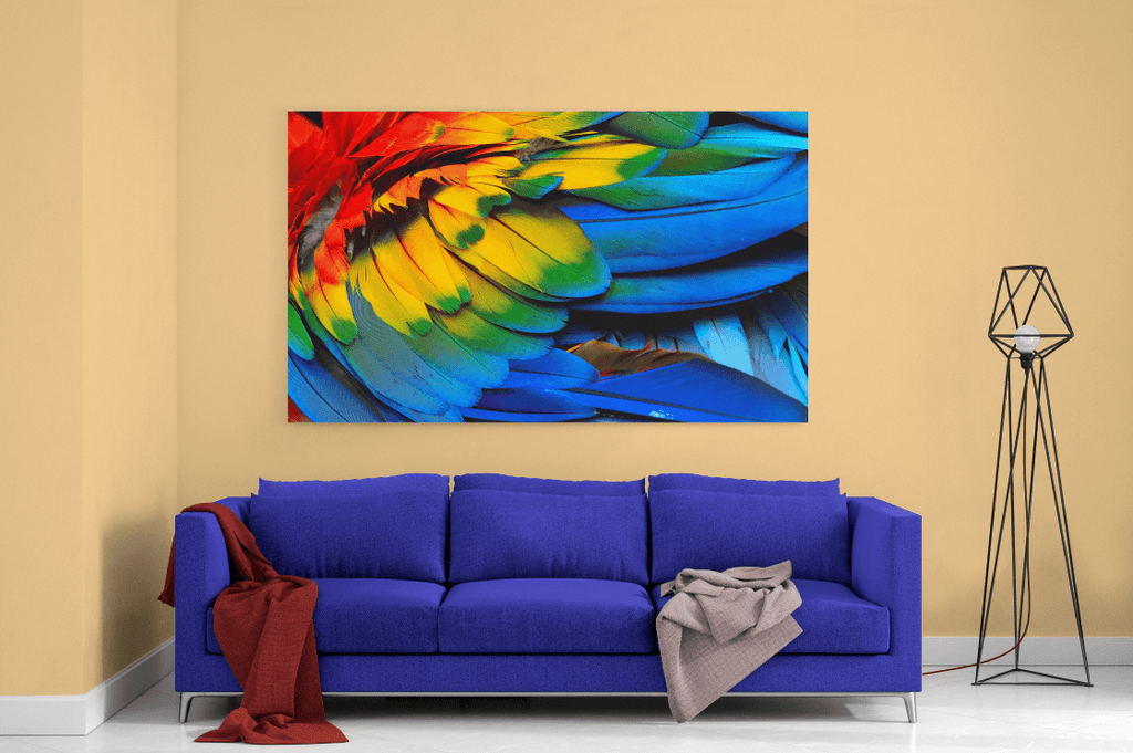 Feathers Single Canvas