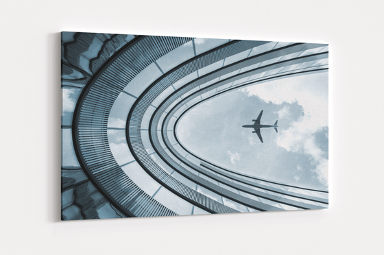 Plane Single Canvas