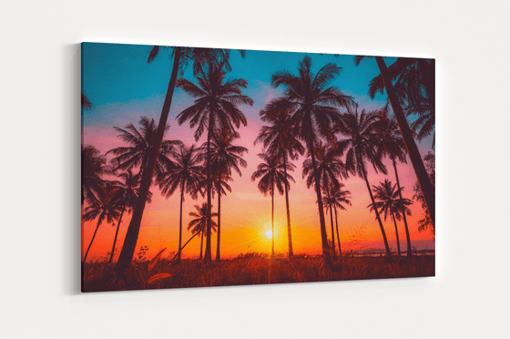 Colors Of Paradise Single Canvas