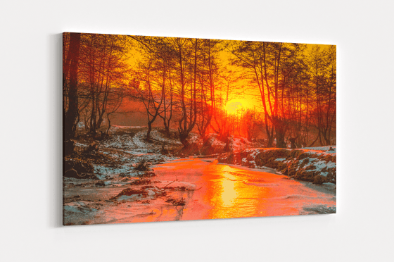 Forest Sunset Single Canvas