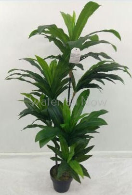 Dracaena - Artificial tree - 140cm