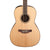 Takamine GY93ENAT Left Handed