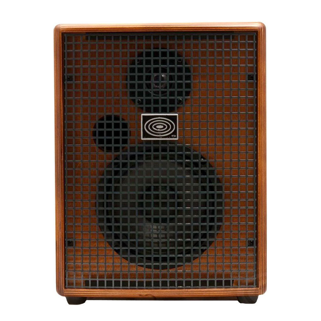 Schertler 100 WATT ACOUSTIC GTR AMP 6 INCH SPKR WOOD