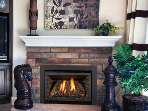 Chaska 25: Kozy Heat Fireplace Insert
