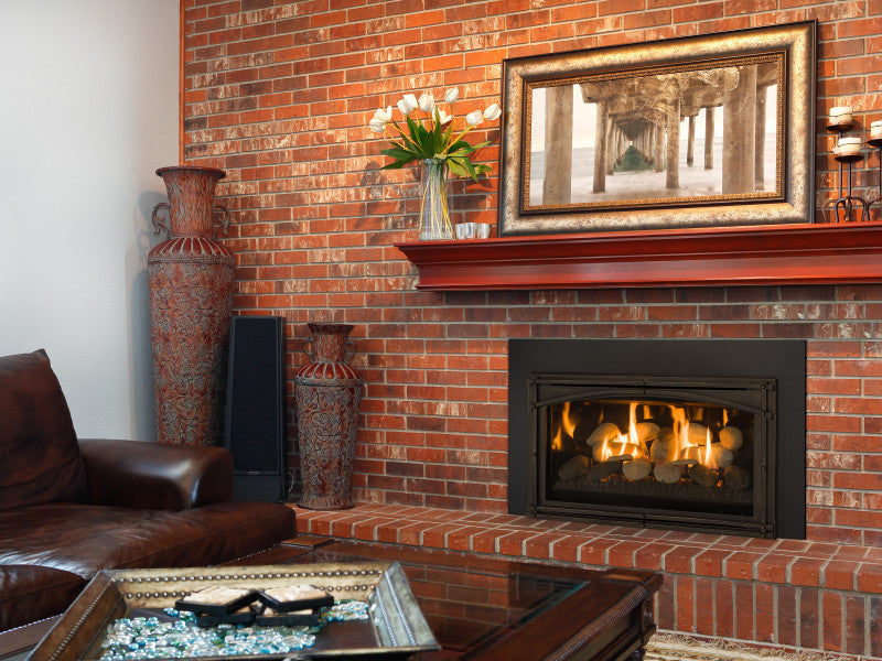Kozy Heat Fireplace Insert Chaska 29 Heatingworld