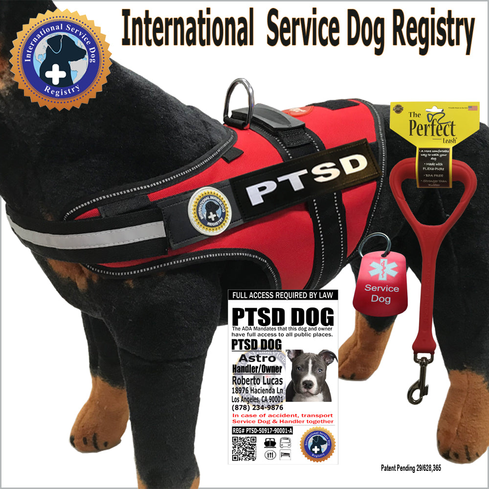 Assistance dog vest investment demand graph curved or straight
