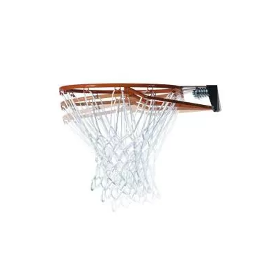 Lifetime Adjustable In-Ground basketball Hoop (50 Inch Polycarbonate)