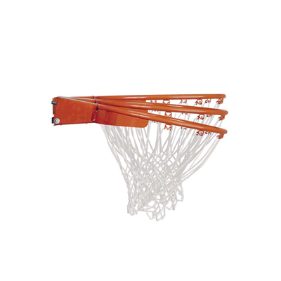 Lifetime Adjustable In-Ground Basketball Hoop 54-Inch Acrylic - Swings and More