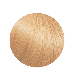 S1 ~ HUMAN HAIR ~ VANILLA ~ CLIP IN EXTENSION Collection