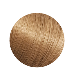 S1 ~ FIBRE HAIR ~ CINNAMON ~ FIBRE CLIP IN EXTENSION Collection