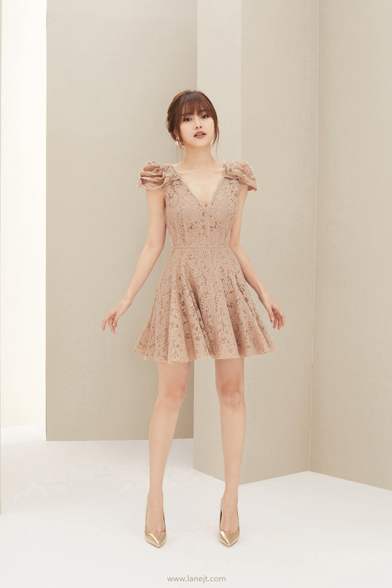 DARCY Rose Lace Mini Dress