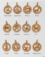 ZODIAC NECKLACE- 14k Yellow Gold