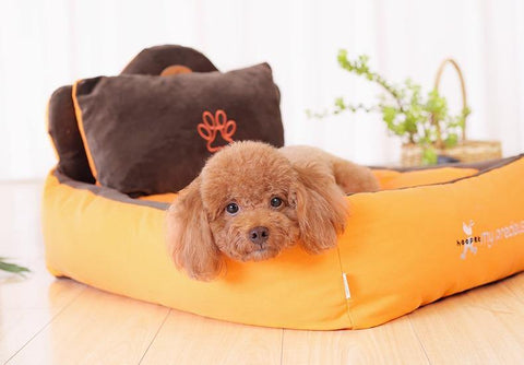 Detachable and Washable Pet Nest with Pillow and Blanket
