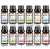 KBAYBO Water Soluble Essential Oil 6 and 12 Pack For Aromatherapy Diffusers and Humidifiers, 10ml each - You can buy this awesome product from Smart Sales Australia!