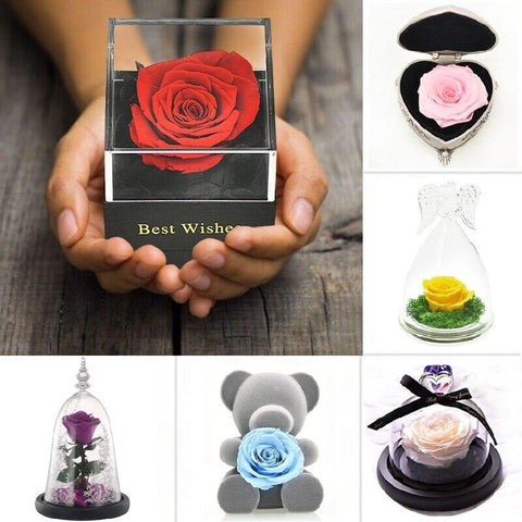 Lovely Real Rose Preserved Artificial Flower Gift For Your Wife and Girlfriend - Smart Sales Australia